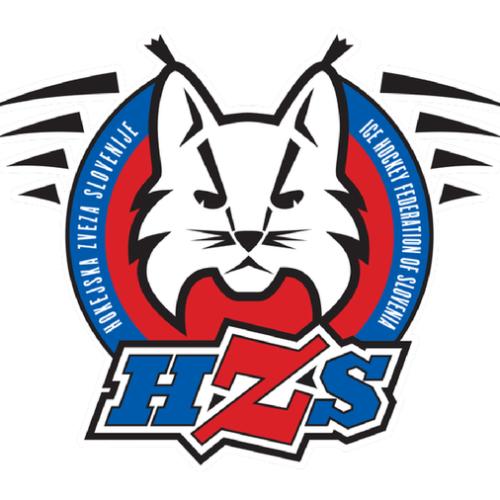 logo hzs