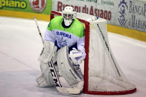 Slovenski vratar pravi, da si danes zagotovimo obstanek (foto: Drago Cvetanovič)