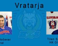 Vratarja1