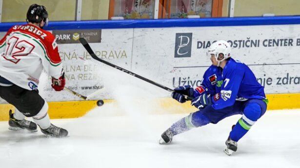 Foto: Drago Cvetanovič - Cveto
