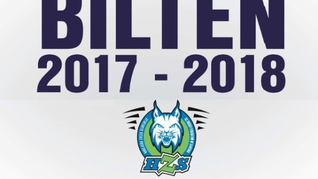 Bilten Hokejske zveze Slovenije 2017/18